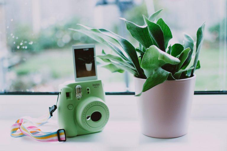 Câmera Fujifilm Mini Instax.
