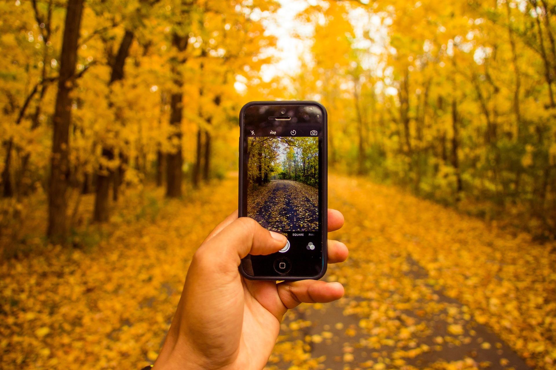 Mão tirando foto de paisagem com celular.