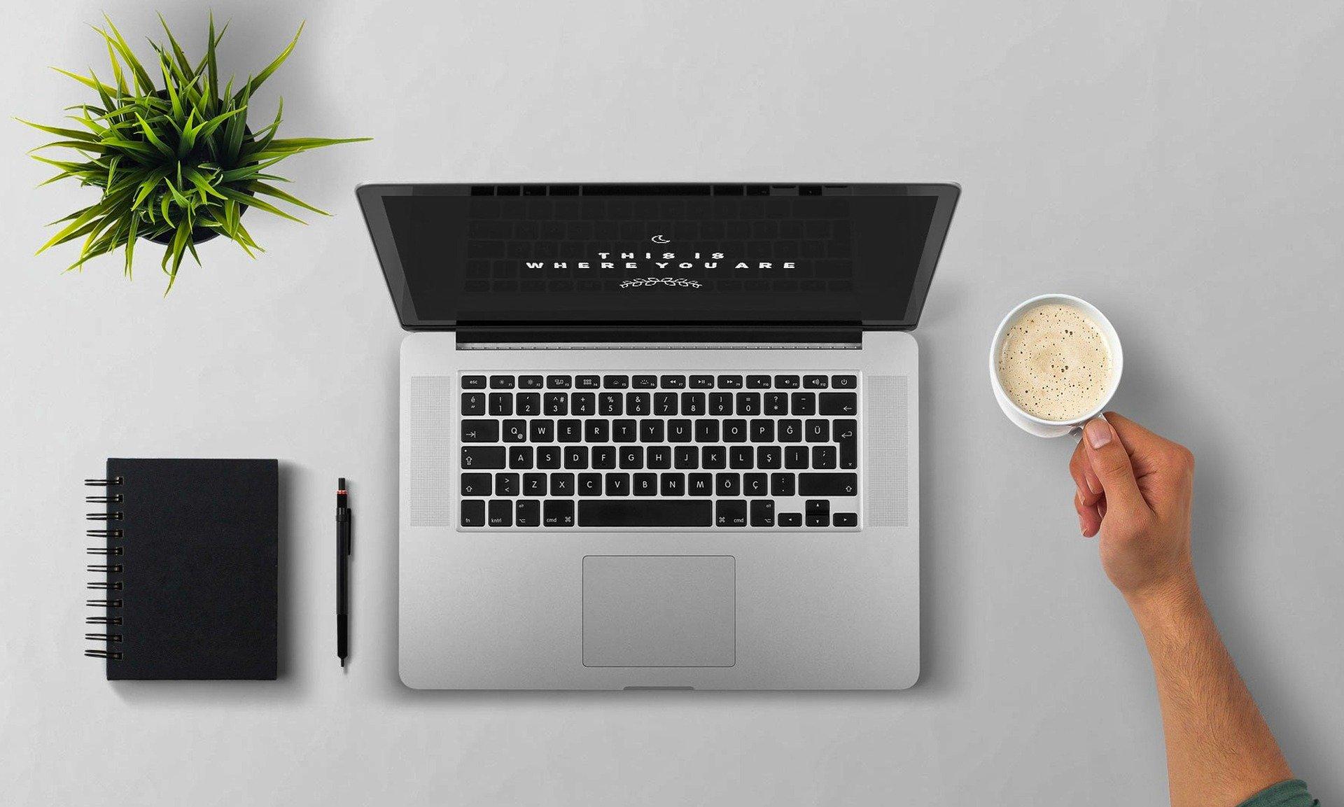 Imagem mostra um notebook, uma caderneta, uma caneta, uma planta e uma xícara de café sobre uma mesa.